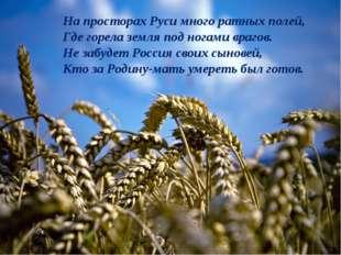 На просторах Руси много ратных полей, Где горела земля под ногами врагов. Не