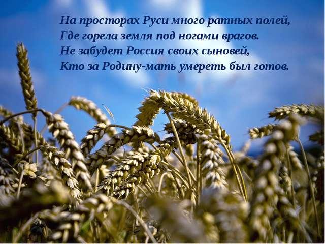 На просторах Руси много ратных полей, Где горела земля под ногами врагов. Не...