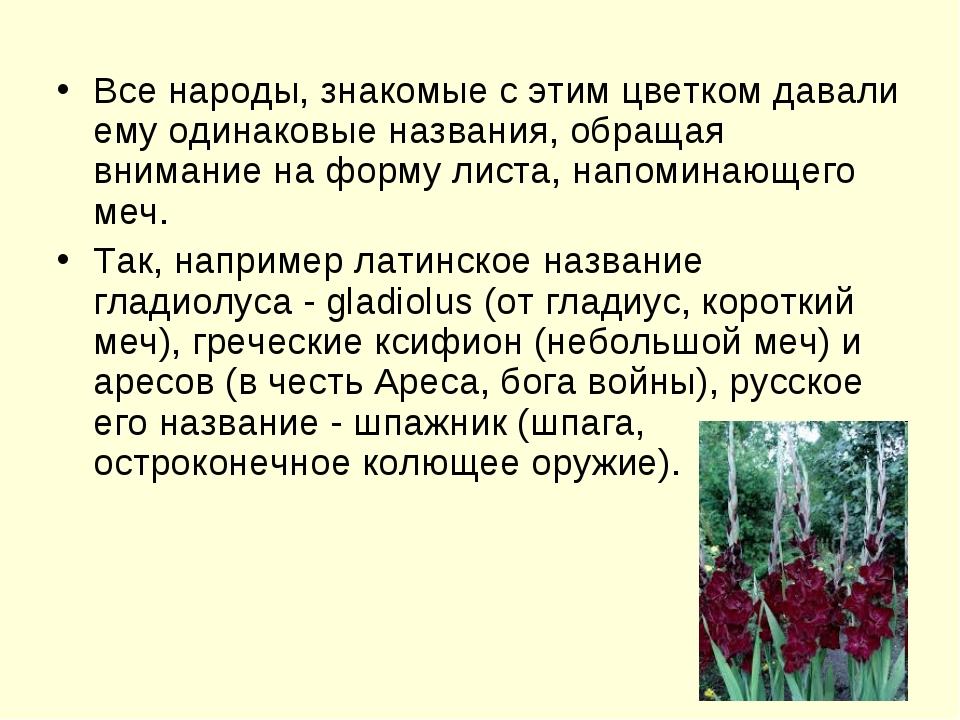 Все народы, знакомые с этим цветком давали ему одинаковые названия, обращая в...