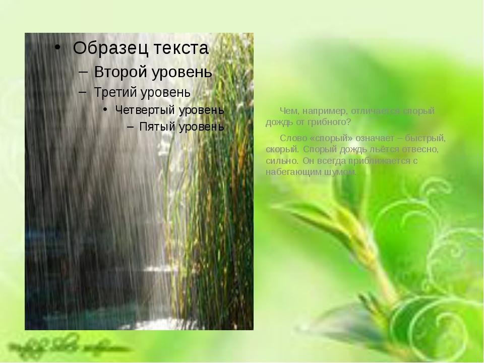 Чем, например, отличается спорый дождь от грибного? Слово «спорый» означает...