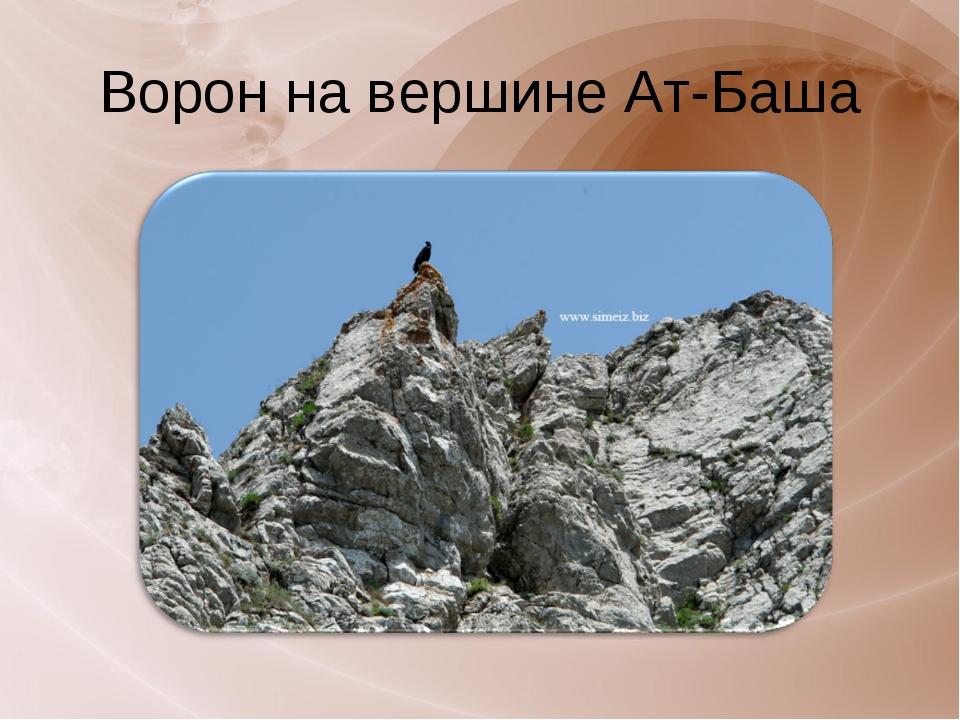 Ворон на вершине Ат-Баша