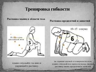 Растяжка мышц в области таза Тренировка гибкости Растяжка предплечий и запяст