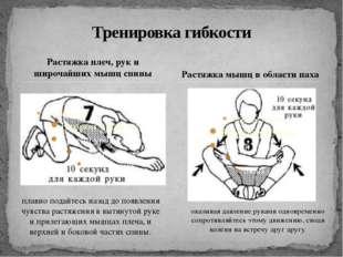 Растяжка плеч, рук и широчайших мышц спины Тренировка гибкости Растяжка мышц