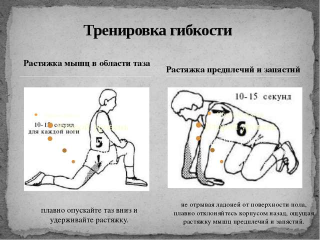 Растяжка мышц в области таза Тренировка гибкости Растяжка предплечий и запяст...