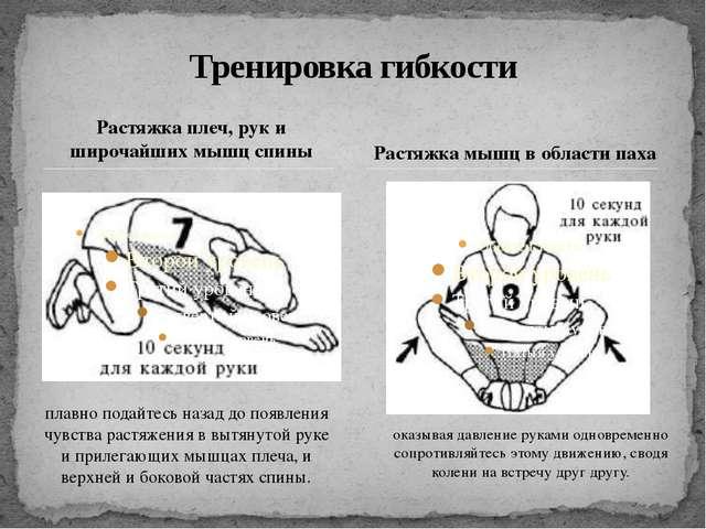 Растяжка плеч, рук и широчайших мышц спины Тренировка гибкости Растяжка мышц...