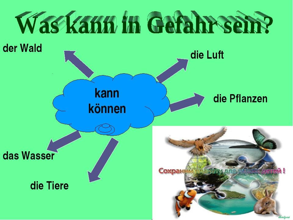 ist (sind) in Gefahr der Wald die Luft die Pflanzen die Tiere das Wasser kann...