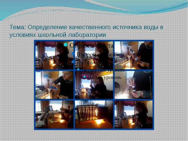 Тема: Определение качественного источника воды в условиях школьной лаборатории