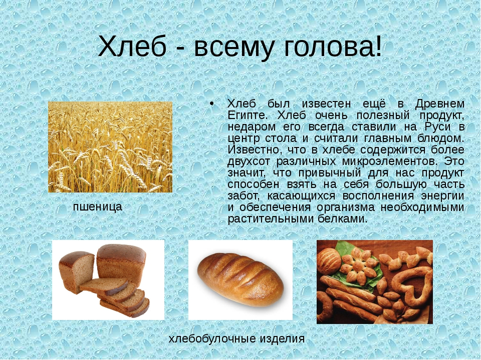 Хлеб - всему голова! Хлеб был известен ещё в Древнем Египте. Хлеб очень полез...