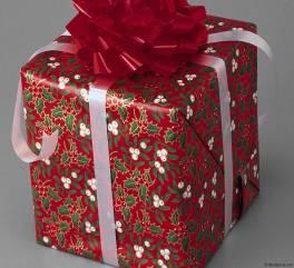 wrappedgift2