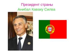 Президент страны Анибал Каваку Силва