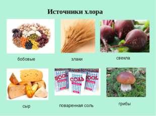 Источники хлора свекла бобовые злаки поваренная соль сыр грибы