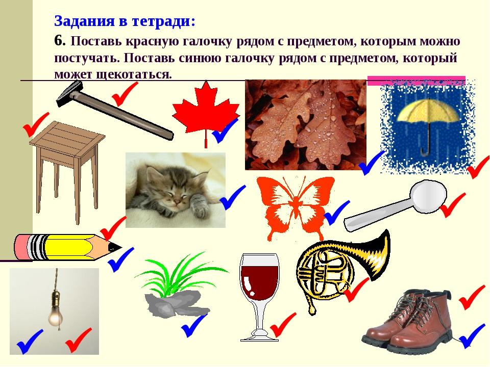 Задания в тетради: 6. Поставь красную галочку рядом с предметом, которым можн...
