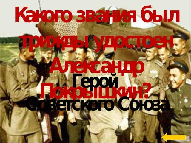 Какую профессию должен был унаследовать от отца и деда Александр Покрышкин?...