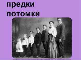 предки потомки