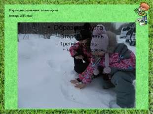 Период исследования: зимнее время (январь 2015 года)