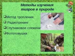 Методы изучения тигров в природе Метод тропления Радиотрекинг Спутниковое сле