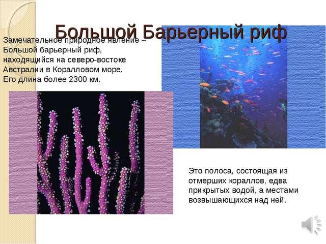 Замечательное природное явление – Большой барьерный риф, находящийся на север...