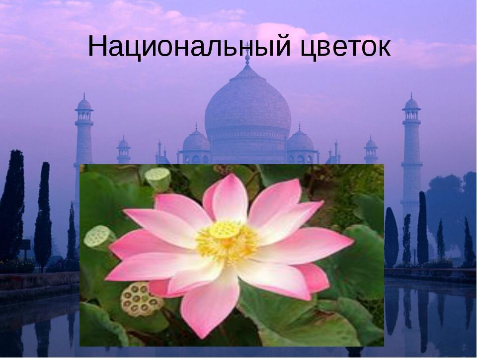 Национальный цветок