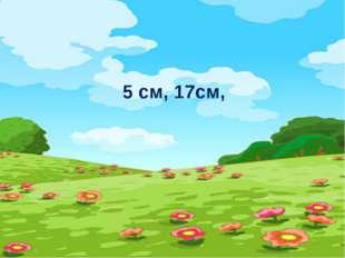 5 cм, 17см,