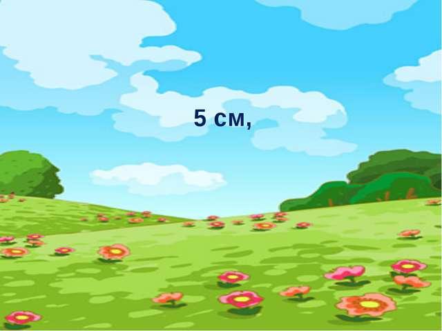 5 cм,