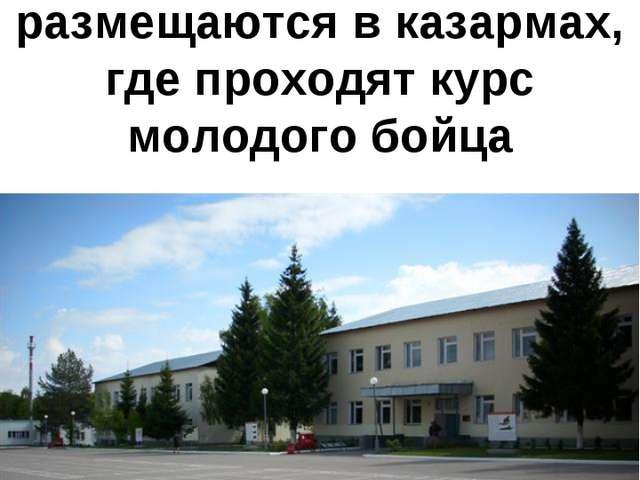 Прибывшие на пополнение в полк военнослужащие размещаются в казармах, где про...