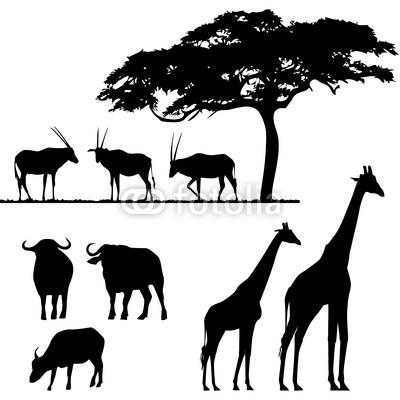 Фотообои африканские животные, вектор с - живая природа * PIXERS.ru
