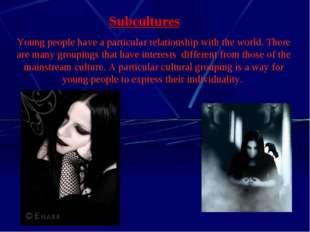 Subcultures Young people have a particular relationship with the world. There