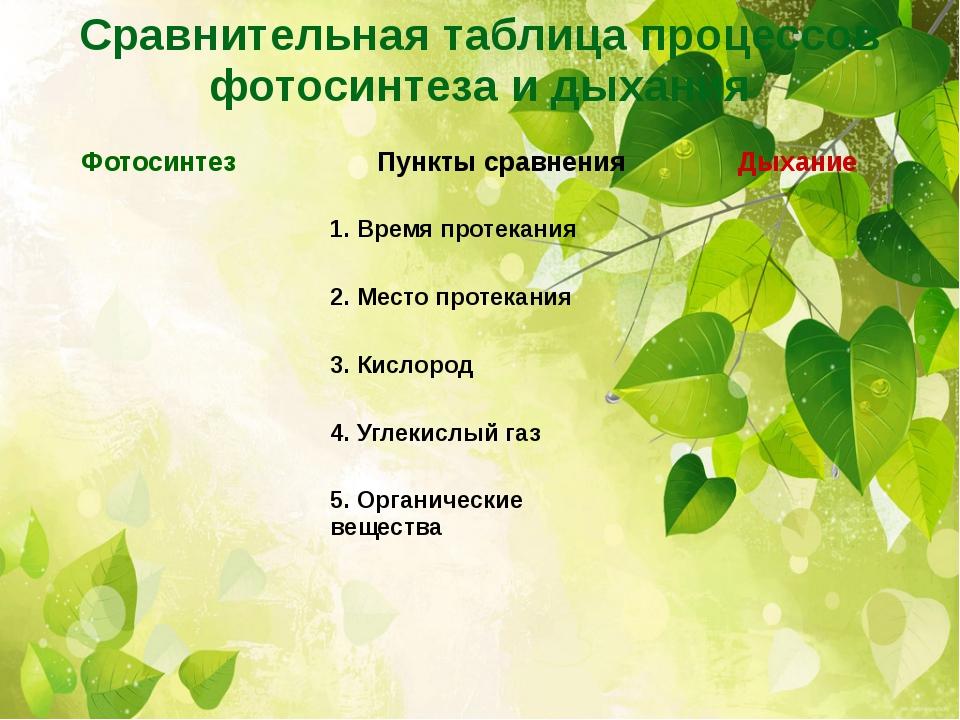 фотосинтеза и дыхания