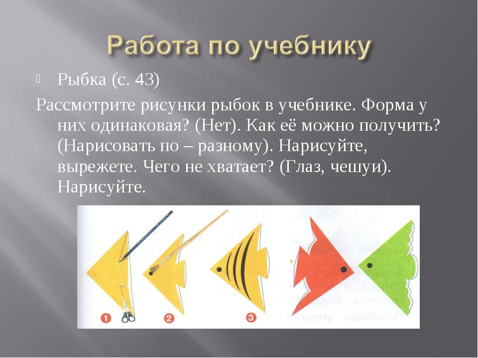 Рыбка (с. 43) Рассмотрите рисунки рыбок в учебнике. Форма у них одинаковая? (...