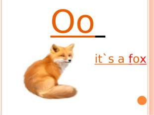 Oo it`s a fox