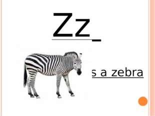 Zz it`s a zebra