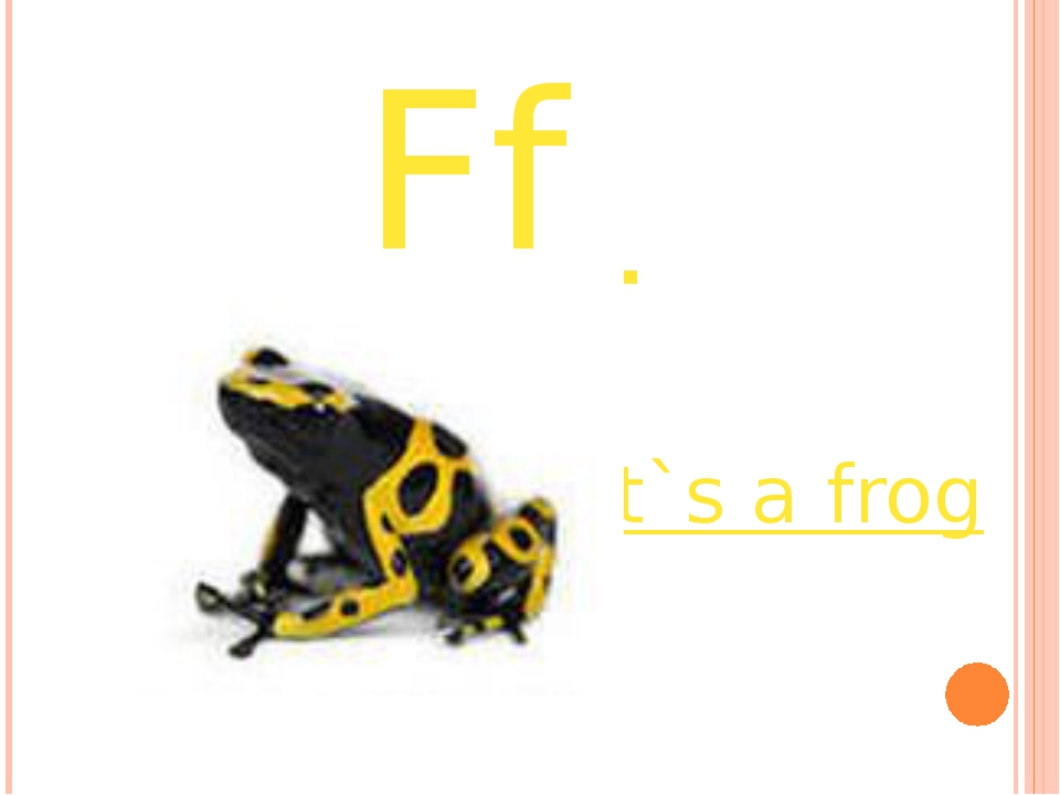 Ff it`s a frog