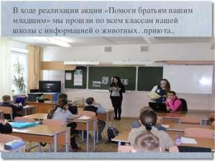В ходе реализации акции «Помоги братьям нашим младшим» мы прошли по всем клас