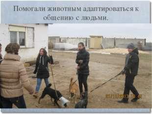 Помогали животным адаптироваться к общению с людьми.