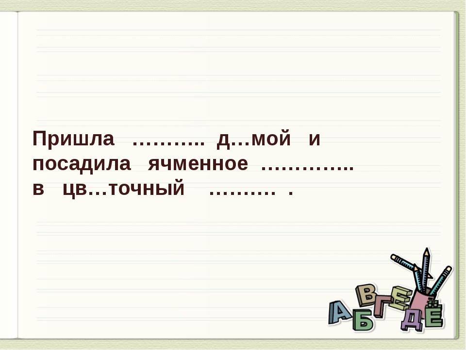 Пришла ……….. д…мой и посадила ячменное ………….. в цв…точный ………. .