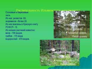 Сосновые и березовые леса. Из них: реликтов -50, эндемиков –более 20. Из них