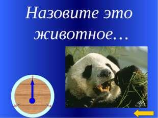 Назовите это животное… Welcome to Power Jeopardy © Don Link, Indian Creek Sch