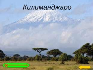 Африканцы называют эту гору «Горой божества холода». Назовите её, если коорди
