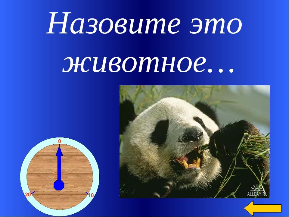 Назовите это животное… Welcome to Power Jeopardy © Don Link, Indian Creek Sch...