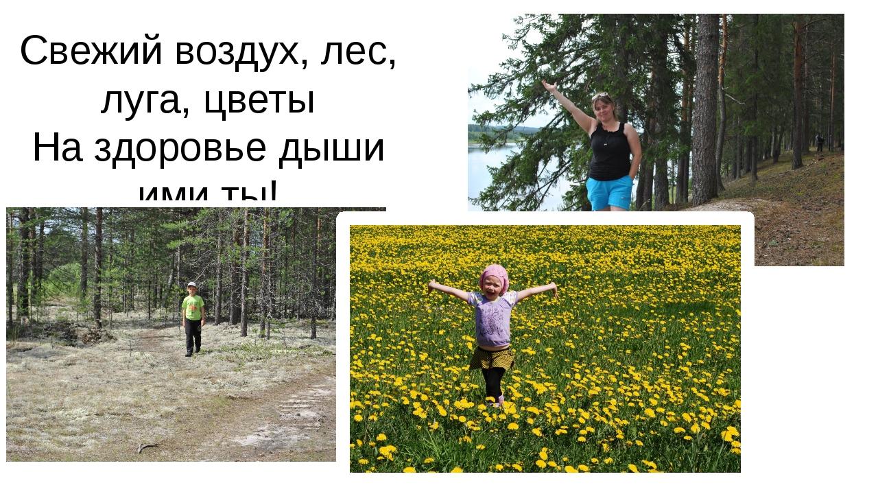 Свежий воздух, лес, луга, цветы На здоровье дыши ими ты!