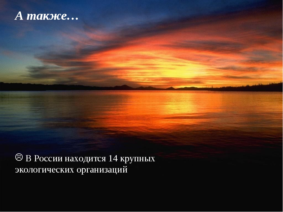 А также… В России находится 14 крупных экологических организаций