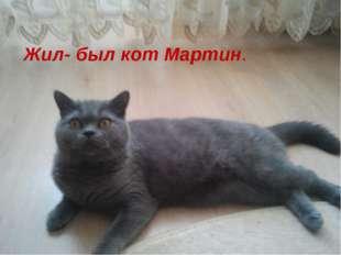Жил- был кот по имени Мартин и мы захотели -рассказать немного о нем Жил- был