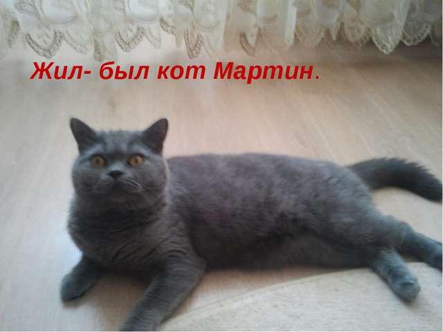 Жил- был кот по имени Мартин и мы захотели -рассказать немного о нем Жил- был...