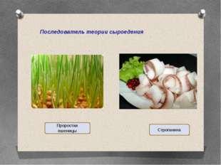 Последователь теории сыроедения Проростки пшеницы Строганина