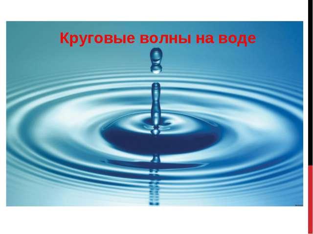Круговые волны на воде
