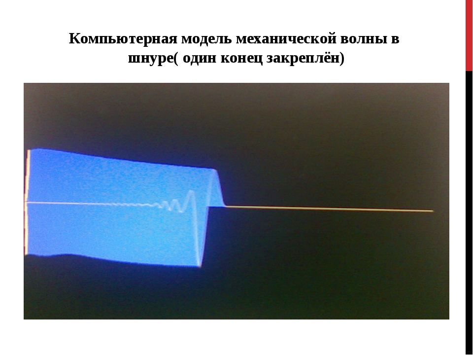 Компьютерная модель механической волны в шнуре( один конец закреплён)