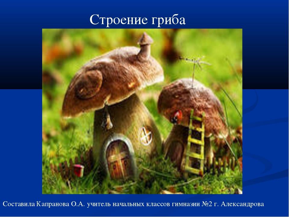 Строение гриба Составила Капранова О.А. учитель начальных классов гимназии №2...