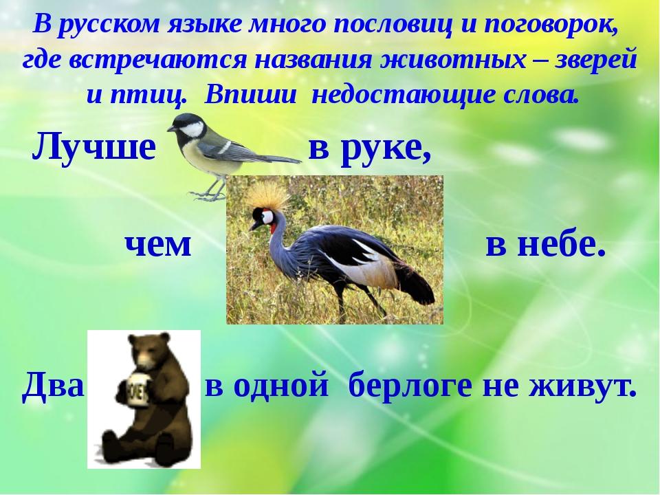 В русском языке много пословиц и поговорок, где встречаются названия животных...