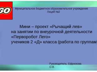 Муниципальное бюджетное образовательное учреждение Лицей №2 Мини – проект «Ры