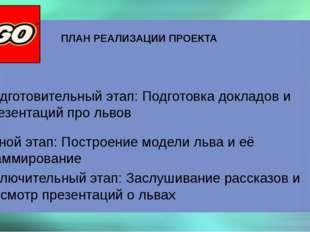 ПЛАН РЕАЛИЗАЦИИ ПРОЕКТА Подготовительный этап: Подготовка докладов и презента